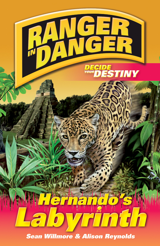 Ranger in Danger Hernandos Labyrinth